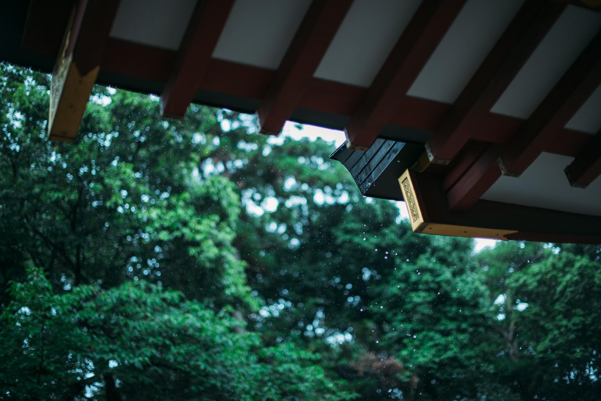 wedding maedori 00350032