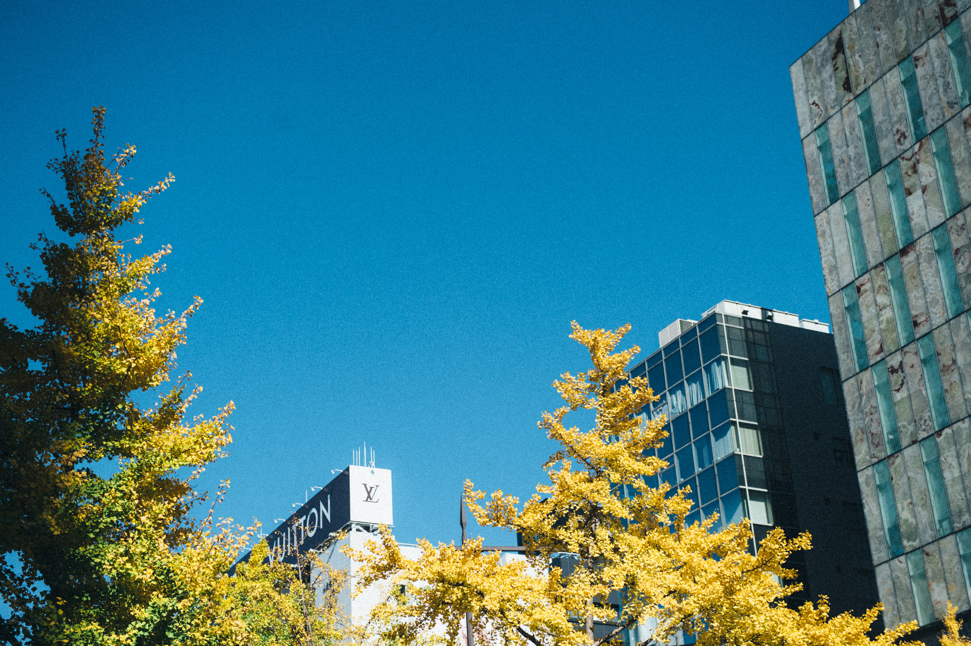 神戸迎賓館 24
