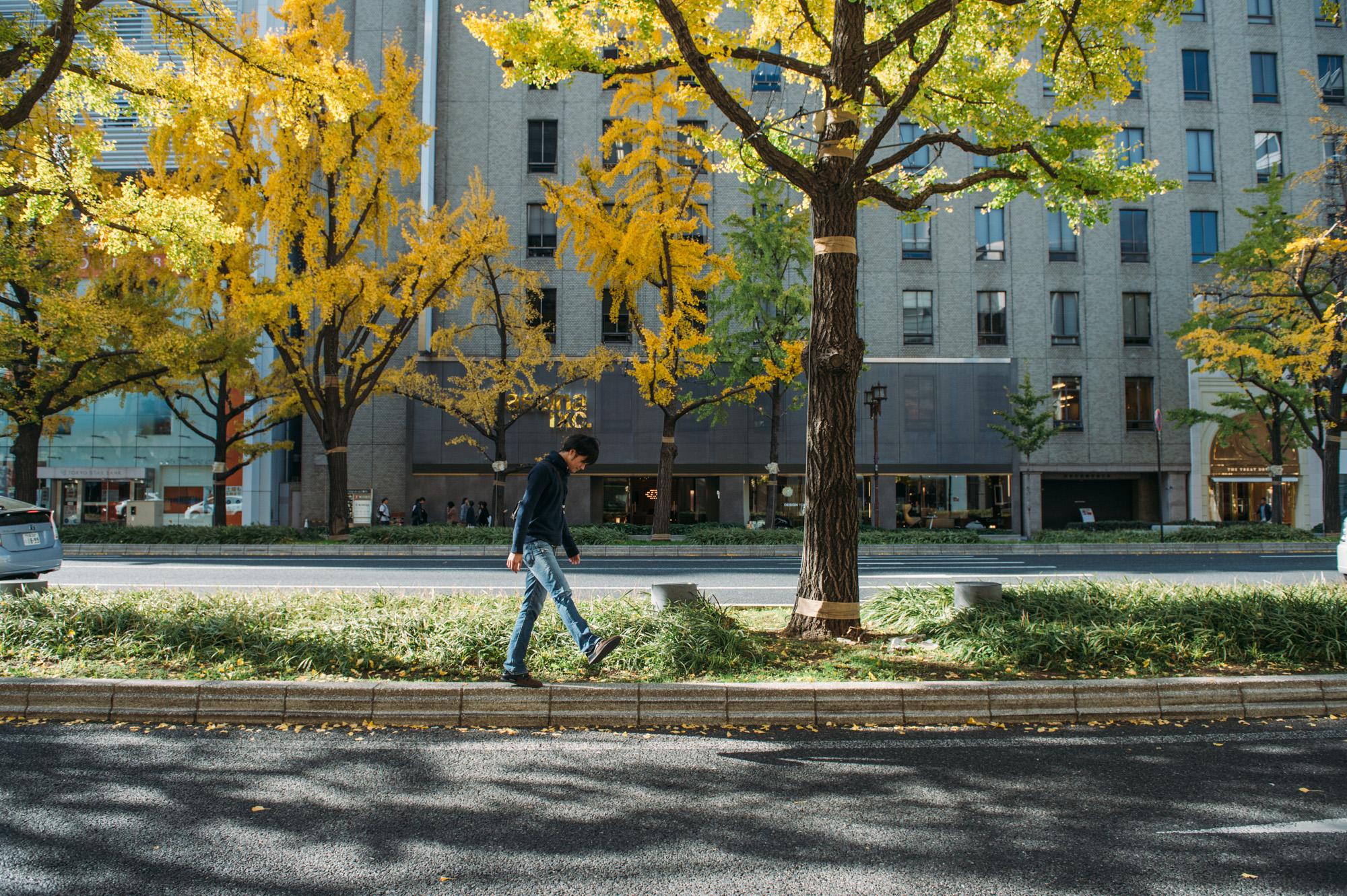 神戸迎賓館 34