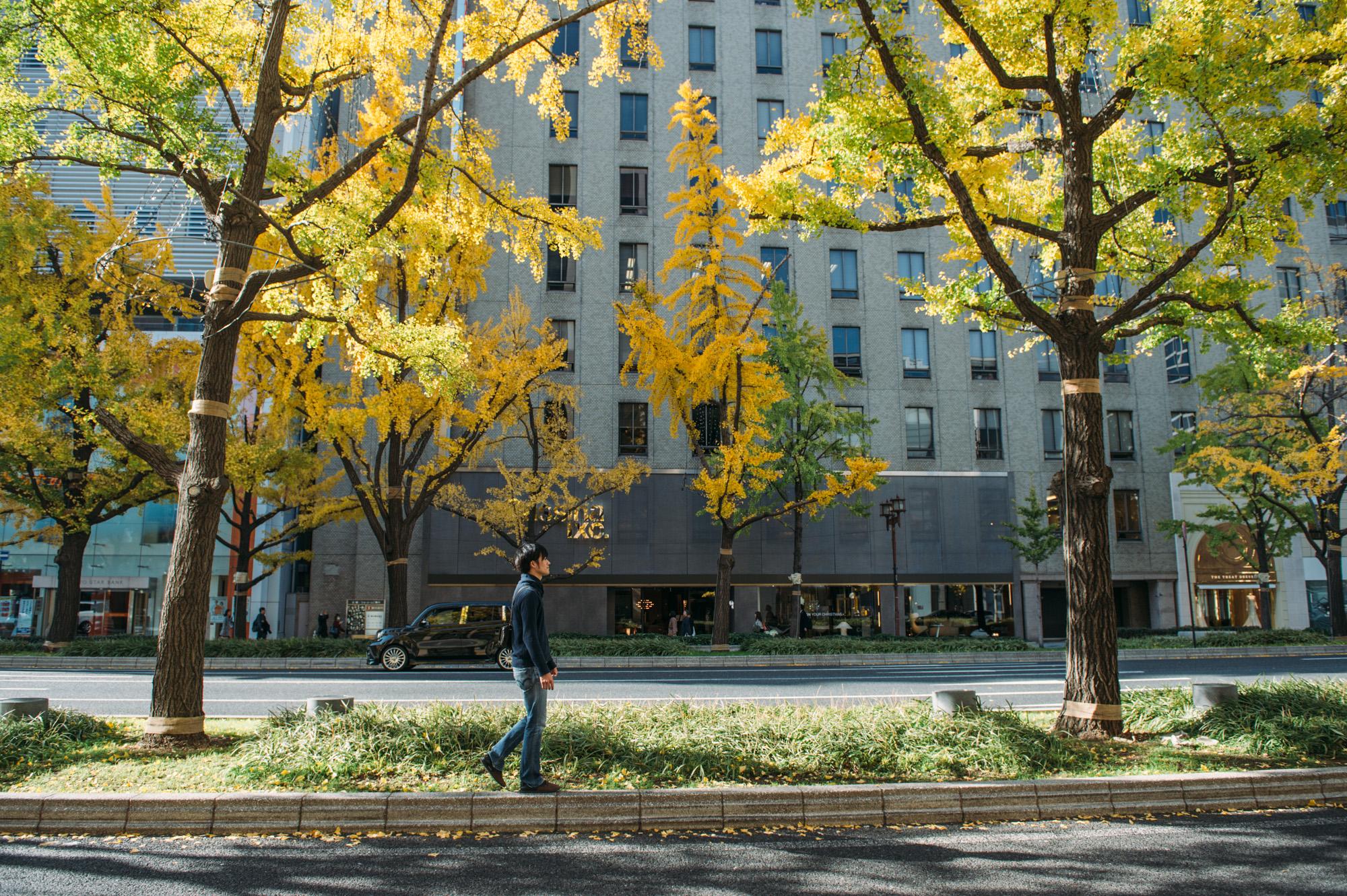 神戸迎賓館 33