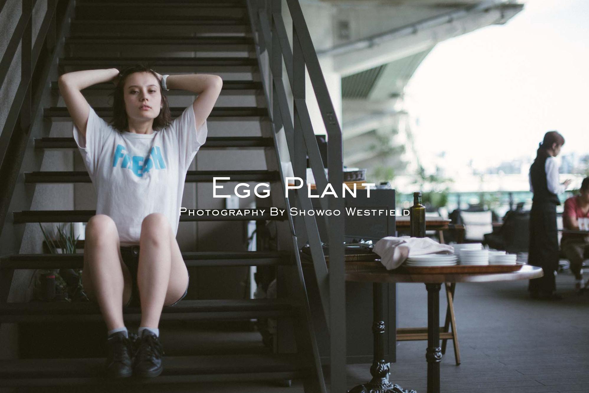 egg plant model